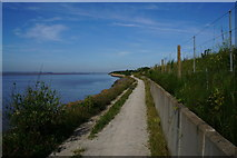 TA0025 : The Yorkshire Wolds Way towards North Ferriby by Ian S