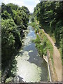SP9011 : The Wendover Arm looking west from the Bridge at Drayton Beauchamp by Chris Reynolds