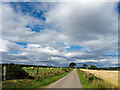 NH7060 : Cycling country - on National Cycle Route 1 by Julian Paren