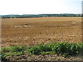 TM0188 : Stubble field south of Eccles Wood by Evelyn Simak