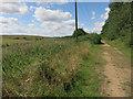 TL2571 : Dismantled railway at Godmanchester Nature Reserve by Hugh Venables