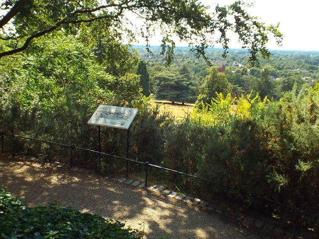 Viewpoint in Richmond Park