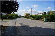 SE5947 : Acaster Lane at Myrtle Avenue, Bishopthorpe by Ian S