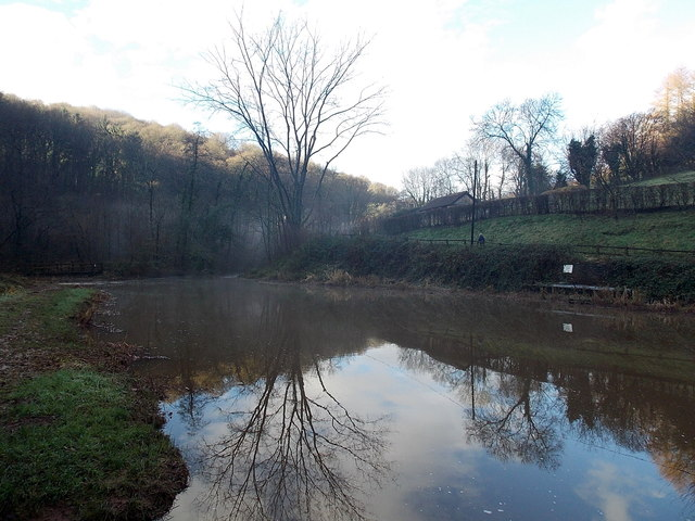 Reflections on a pond in the Angiddy Valley west of Tintern