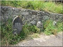 SS8872 : Gravestones to 'Mans Best Friend' by Debbie J