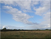 N3921 : Cables overhead by Ian Paterson