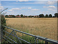 TL2969 : Field on the edge of Hemingford Grey by Hugh Venables
