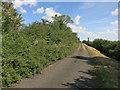 TL3665 : Utton's Drove by Hugh Venables