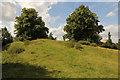 SP7944 : Castle motte by Richard Croft