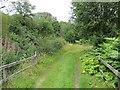 NJ1840 : Strathspey Railway trackbed by Richard Webb