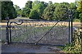 SX8670 : Wrought iron gate to Forde House grounds, Torquay Road, Newton Abbot by Robin Stott