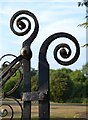 SX8670 : Detail, wrought iron gate to Forde House grounds, Torquay Road, Newton Abbot by Robin Stott
