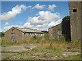 TM1780 : WW2 relics near Billingford Wood by Evelyn Simak