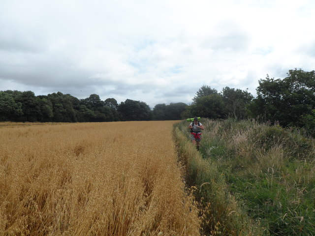 Hadrian's Wall Path passes between fields and The Tyne