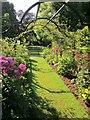 SX9265 : Rose arbour, Tessier Gardens by Derek Harper