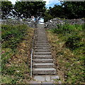 SM7525 : Up a long flight of steps in St David's by Jaggery