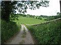 ST8194 : Down to the Little Avon-Newington Bagpath, Glos by Martin Richard Phelan
