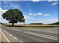 SP4622 : Rousham Gap by Des Blenkinsopp