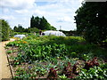 TQ4551 : The vegetable garden at Chartwell by Richard Humphrey