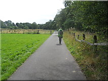 NY6565 : The path by Tipalt Burn into Greenhead by Anthony Parkes