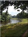 NY4156 : Fly Fishing in The River Eden by Anthony Parkes