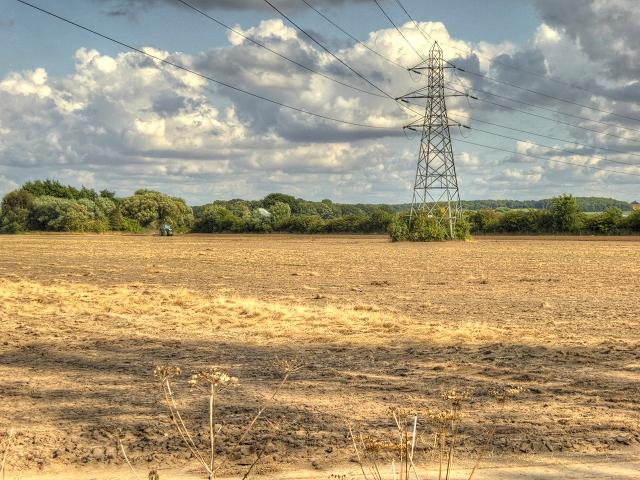 Bare Field off Toll Bar Lane