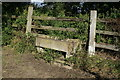 SE5425 : Stone Trough at East Ings by Ian S