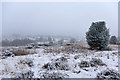 TQ4729 : Ashdown Forest, winter view by Robin Webster