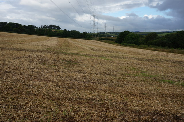 Field ready for ploughing