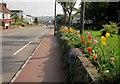 SX9062 : Torbay Road, Livermead by Derek Harper