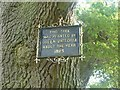 SP9912 : Ashridge House - Victorian plaque attached to tree by Rob Farrow