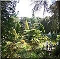 SZ0589 : Compton Acres Gardens by Paul Gillett