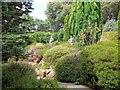 SZ0589 : Sculptures in Heather Garden by Paul Gillett