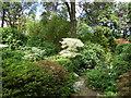 SZ0589 : Heather Garden, Compton Acres by Paul Gillett