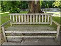 SE8383 : Commemorative Seat, Thornton-le-Dale, Yorkshire by Christine Matthews