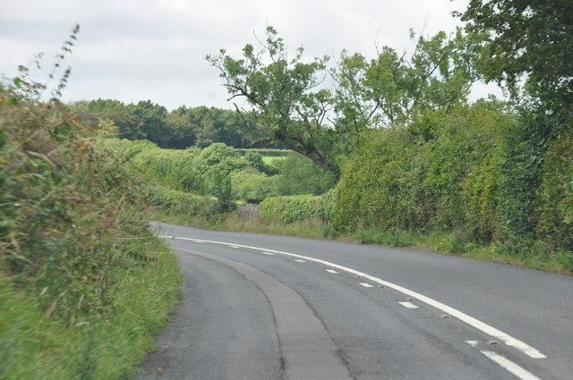 North Devon : Country Road