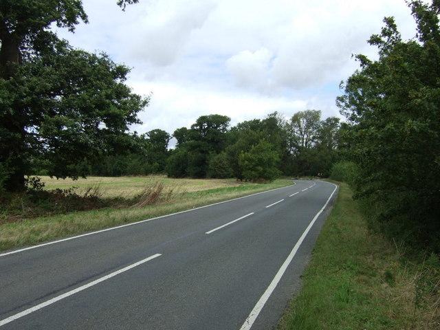 Rural road towards Abbots Ripton