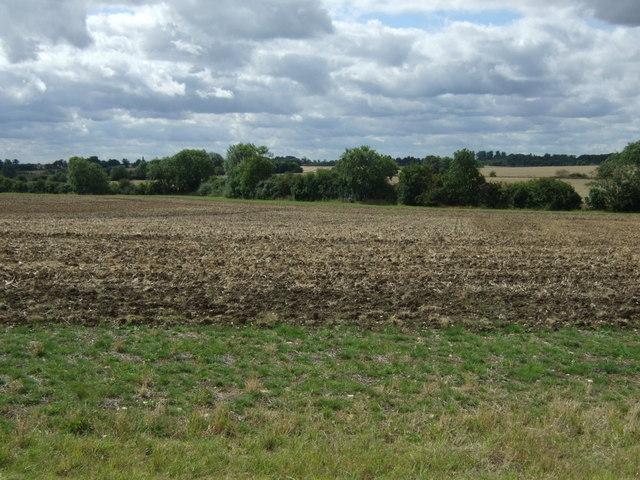 Field near Dam Bridge