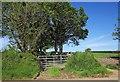 SX3370 : Field access track southeast of Golberdon by Derek Harper