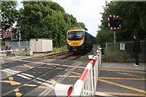 TA2609 : Level crossing on Littlefield Lane by Chris
