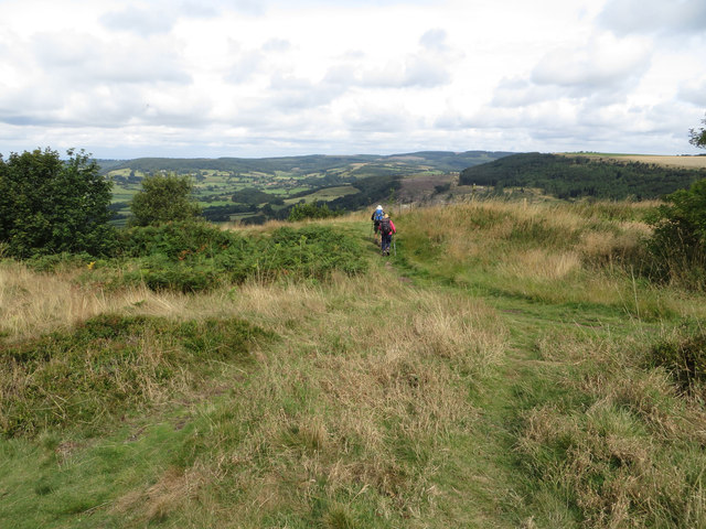 Walkers on the Cleveland Way LDP