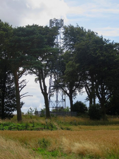 Mobile phone mast amongst trees
