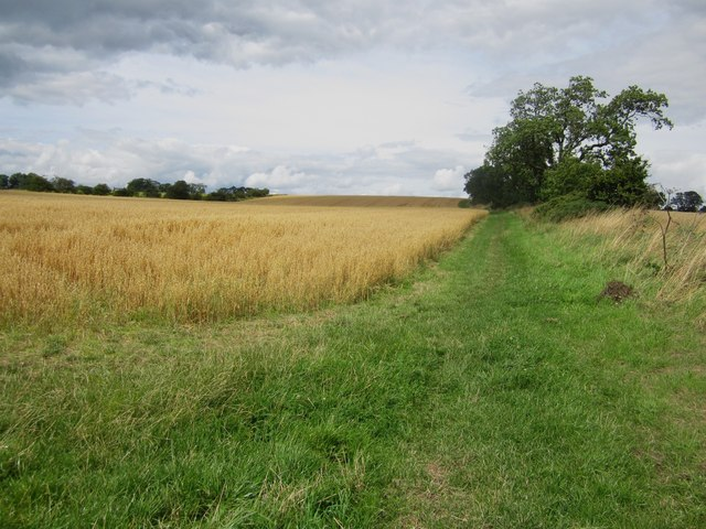 Footpath between Shilbottle Grange and Longdyke
