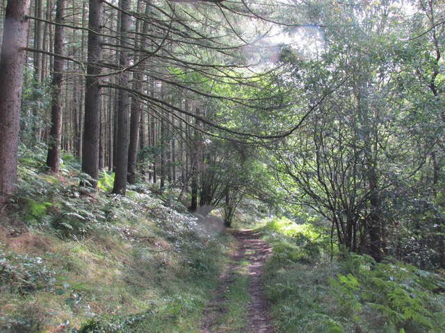The track through Abney clough.