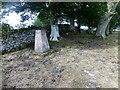 NY5817 : Windrigg Hill Trig Point by Rude Health