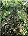 SX3471 : Track near Jordan by Derek Harper