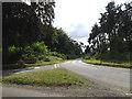 TM3189 : Pheasants Walk, Earsham by Geographer