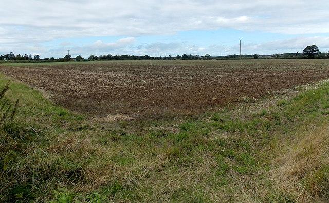 Bare field near David Hendry Cars, Malmesbury