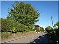 SX3671 : Florence Road, Kelly Bray by Derek Harper
