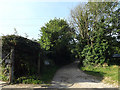 TM1441 : Bridleway off Bobbits lane by Adrian Cable
